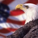Ameryka po kawałku. Przeczytaj, wpadniesz w narodowe kompleksy